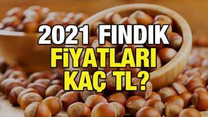 Fındık fiyatı ne zaman açıklanacak? Kabuklu 2021 fındık fiyatları kaç TL?