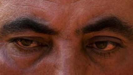 Bu gözlere iyi bakın! 'Alev savaşçıları' canla başla mücadele ediyor