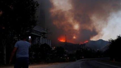Alevler termik santrale sıçradı! İlk görüntüler