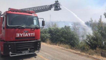 MSB'den orman yangını açıklaması
