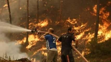TÜKDES: Orman yangınlarını fırsata çevirenleri şikayet edin