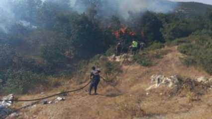 Türkiye'deki orman yangınları sonrası yeni tehlike! Korkutan açıklama