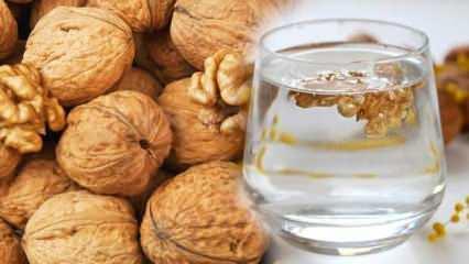 Ceviz suyunun faydaları nelerdir? Ceviz suyu ne kadar içilir? Sarımsaklı ceviz suyu faydaları...