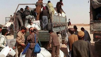 Türkiye'ye yönelik düzensiz Afgan göçleri yeni bir krize mi işaret ediyor?