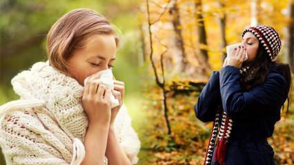 Sonbahar alerjisine dikkat! Uyarılara kulak verin