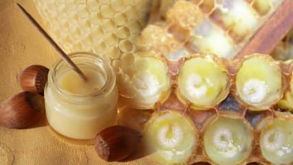Arı sütünün faydaları nelerdir? Antioksidan kaynağı arı sütünün cilde faydaları...