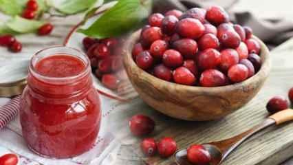 Kızılcık çayının faydaları nelerdir? Kızılcık suyu hangi hastalıklara iyi gelir?