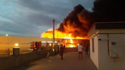 Geri dönüşüm tesisinde çıkan yangın vatandaşı isyan ettirdi