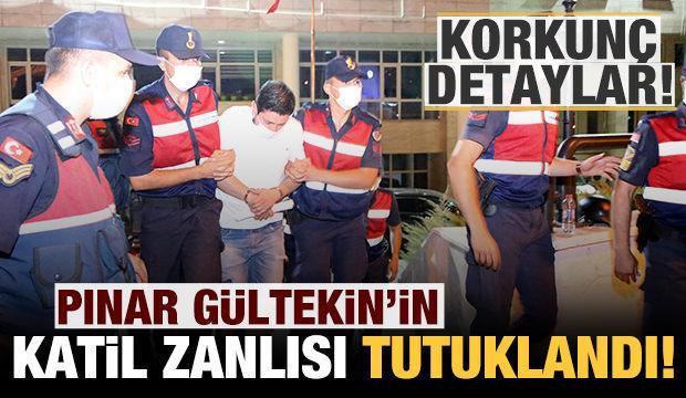 Son dakika: Pınar Gültekin'in katil zanlısı tutuklandı! Korkunç detaylar...