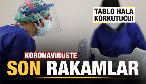 Son dakika: 28 Mart koronavirüs tablosu! Vaka, Hasta, ölü sayısı ve son durum açıklandı